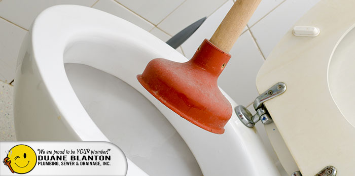Clogged Toilet Repair Services in Round Lake, IL