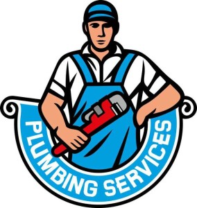 Round Lake Backflow Testing Services
